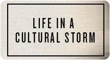 Life In a Cultural Storm
