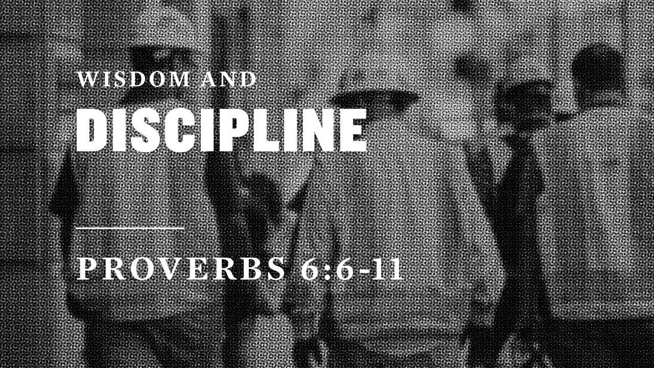 Wisdom and Discipline