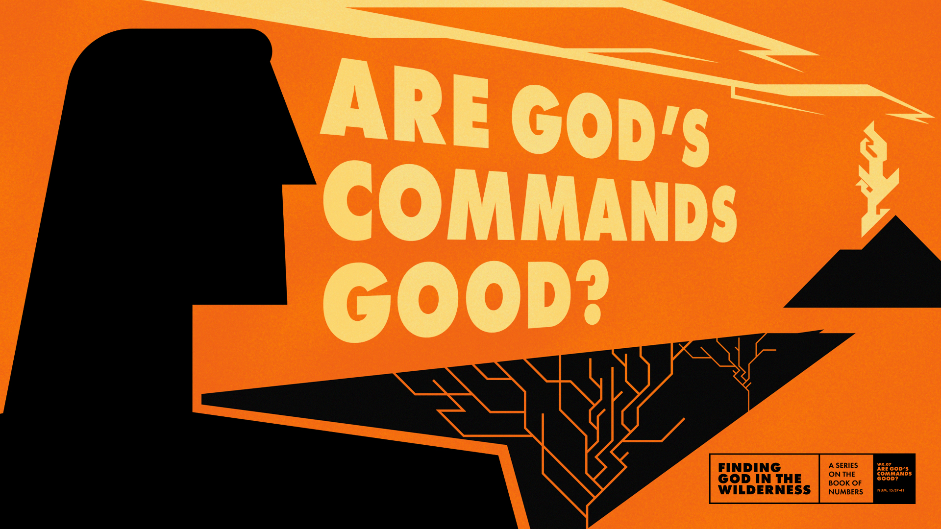 Are God's Commands Good?